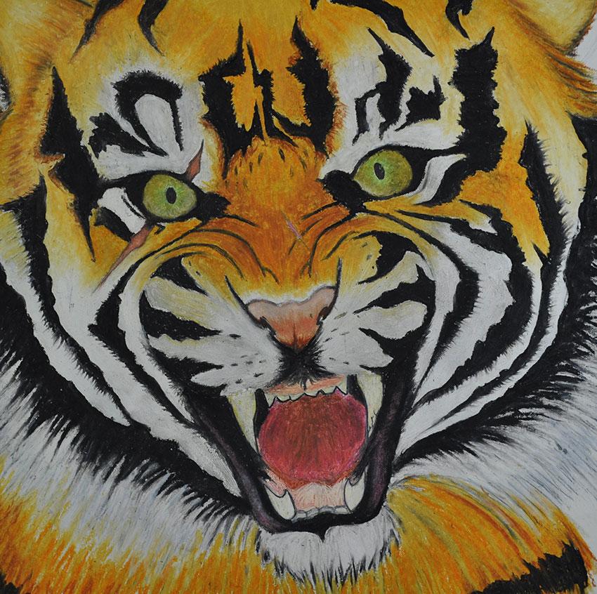 Viciousness of A Tiger