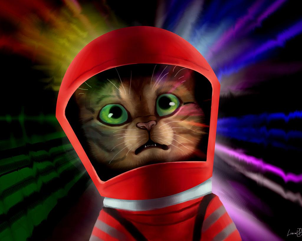 Cat Odyssey