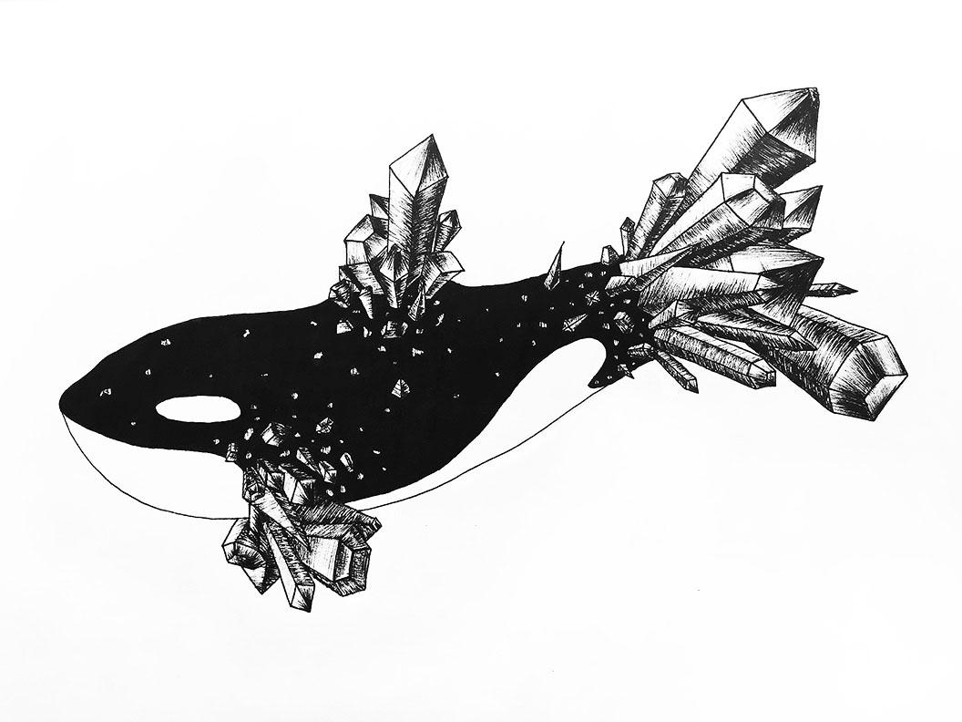 Crystaline Cetacea