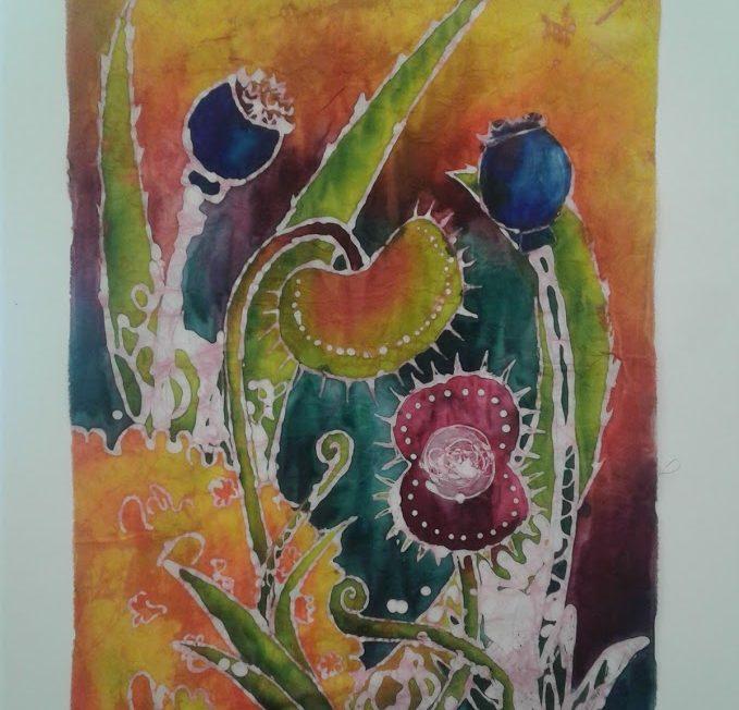 Dionaea Muscipula and Friends